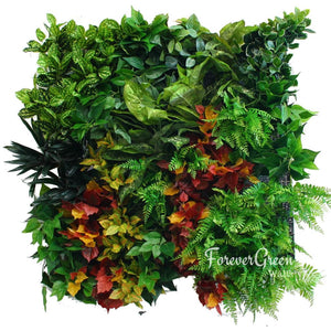 Autumn Amazing | Premier Vertical Garden Screening