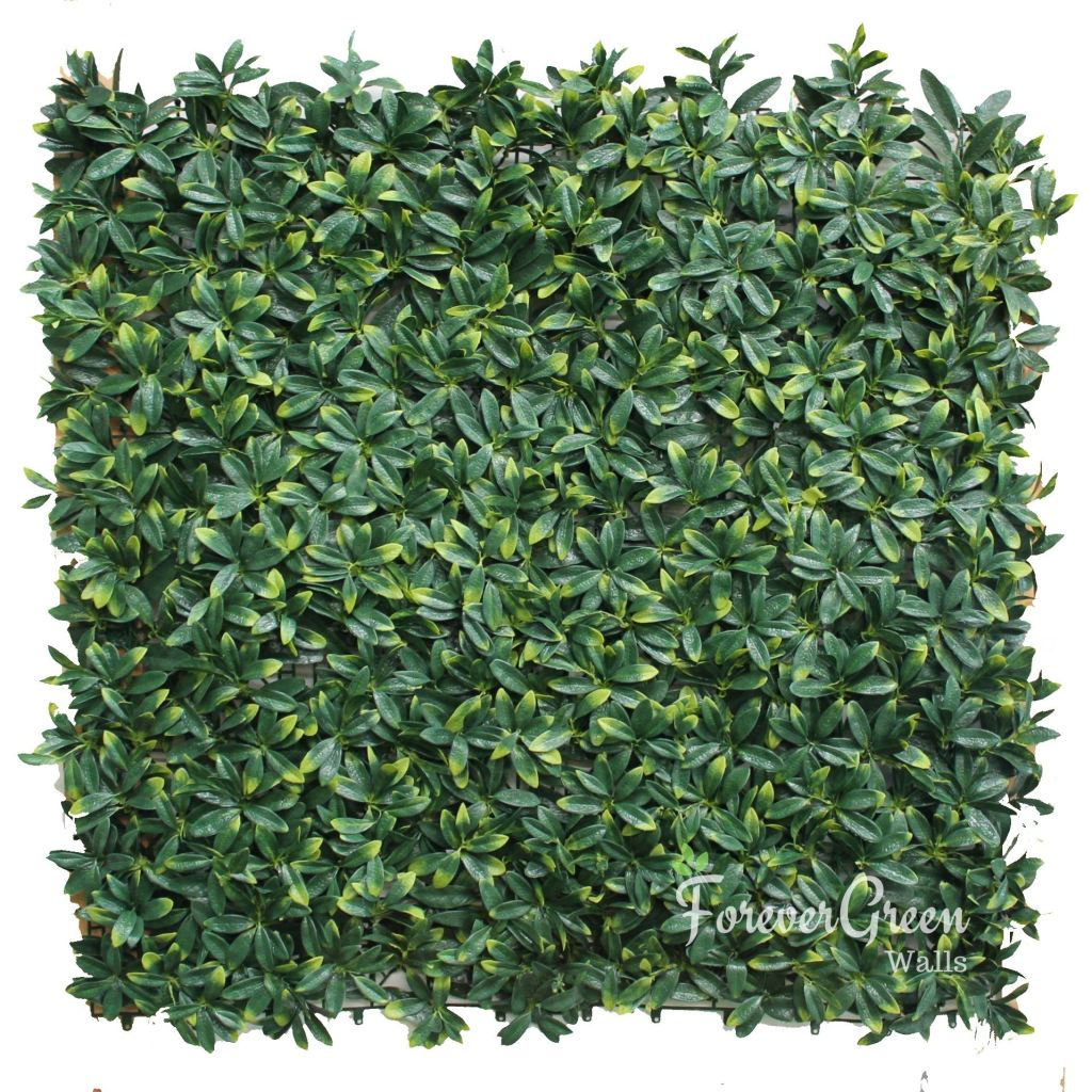Cleyera Leaf | Artificial Plant Panel Artificial Plant Panel