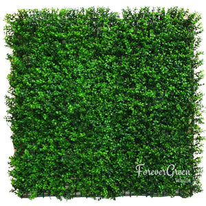 Wintergreen Buxus | Artificial Plant Panel Artificial Plant Panel