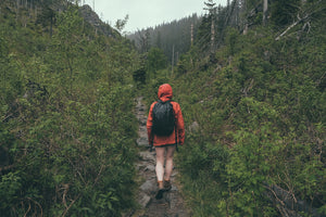 A hiker walks through the forest wearing the best rain jacket while hiking.
