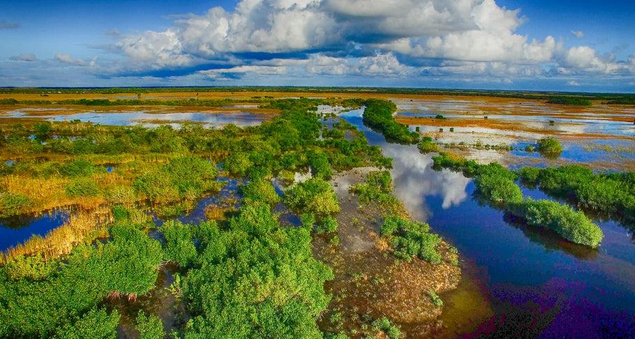 6 Facts About Florida Everglades National Park