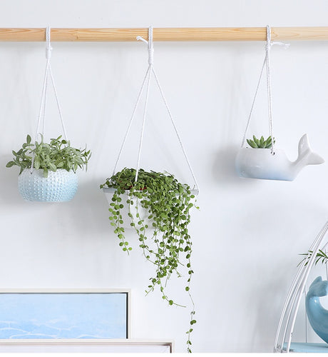 Mill MaisonMill Maison MIZA WHITE CERAMIC ARTISTRY MARINE FUN HANGING PLANT FLOWER POT PLANTER - Home Decor MIZA WHITE CERAMIC ARTISTRY MARINE FUN HANGING PLANT FLOWER POT PLANTER - Home Styling Ideas