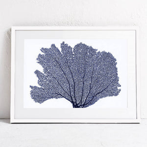 Mill MaisonMill Maison BLUE SEA FAN CORAL CANVAS PRINT WALL ART - Home Decor BLUE SEA FAN CORAL CANVAS PRINT WALL ART - Home Styling Ideas