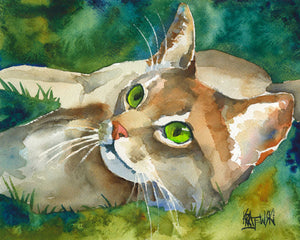 Abyssinian Cat Art Print - Ron Krajewski Art