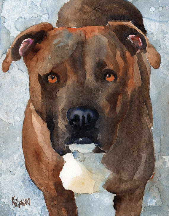 Pitbull Original Watercolor Painting - Ron Krajewski Art