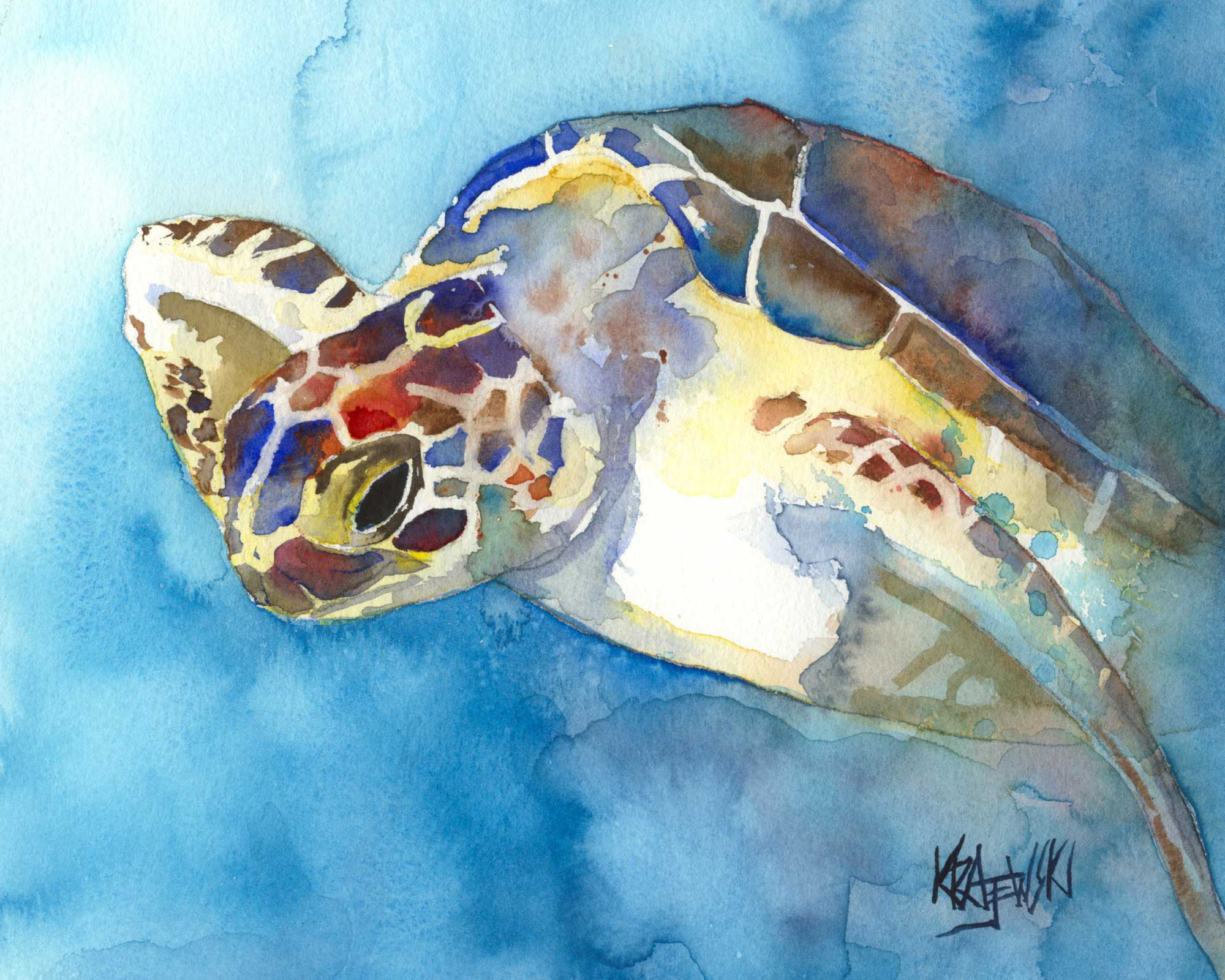 Sea Turtle 042706 - Ron Krajewski Art