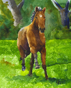Bay Horse Running Art Print - Ron Krajewski Art