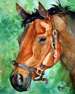 Bay Horse Art Print - Ron Krajewski Art