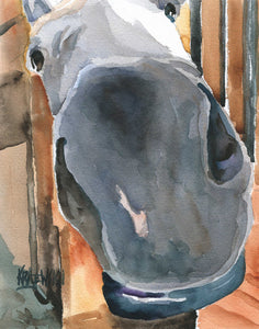 Gray Horse Art Print - Ron Krajewski Art