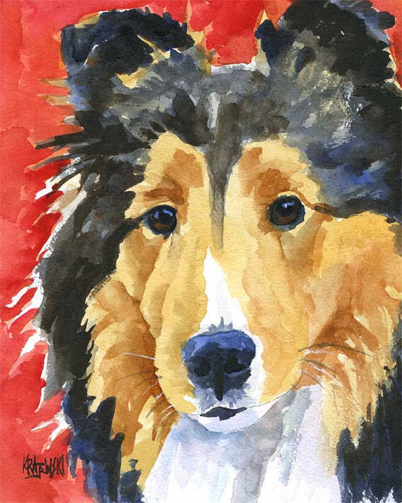 Shetland Sheepdog Original Watercolor Painting - Ron Krajewski Art