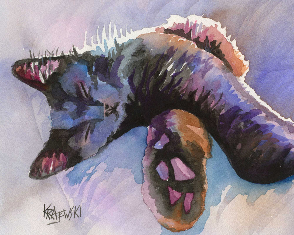 Sleeping Black Cat (Spencer) 071005 - Ron Krajewski Art