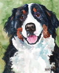 Swiss Mountain Dog Original Watercolor Painting - Ron Krajewski Art