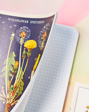 Cavallini & Co Mini Notebook Set of 3 - Wildflowers
