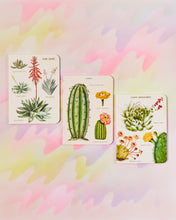 Cavallini & Co Mini Notebook Set of 3 - Succulents