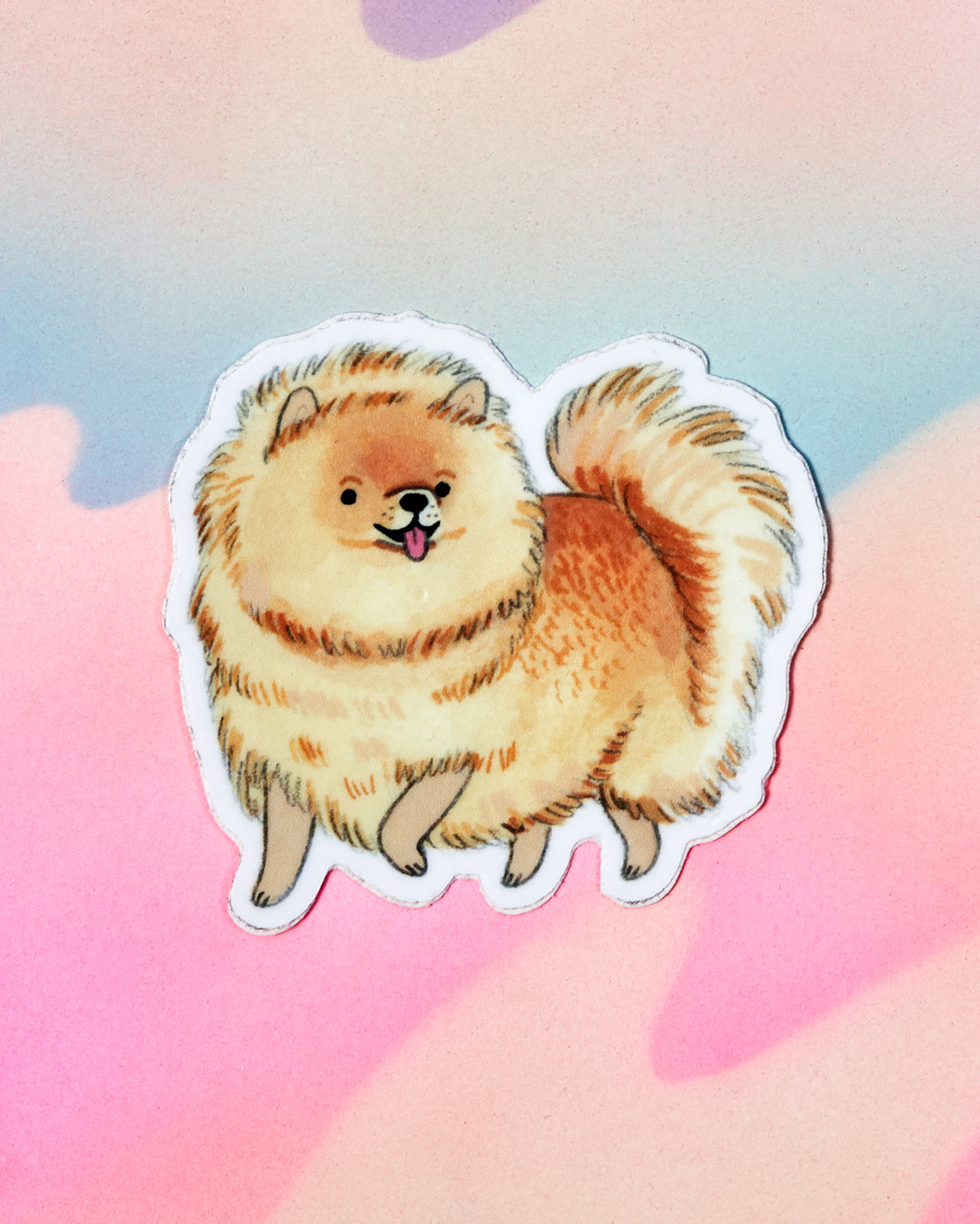 Pomeranian Sticker