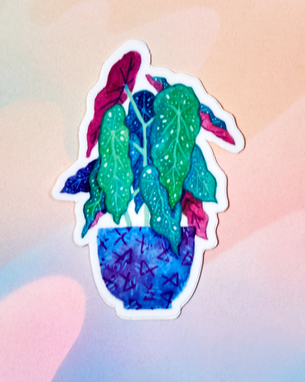 Begonia Sticker