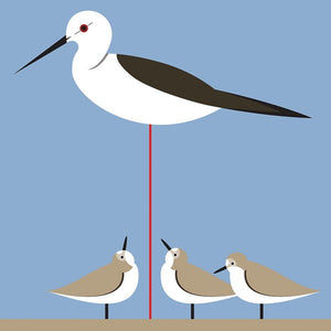 Stilt and Stint BR10