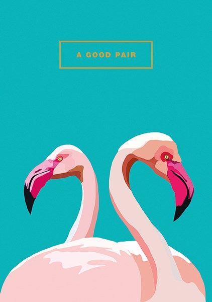 A Good Pair Flamingos