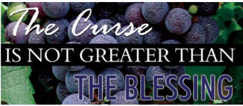 The Curse is Not Greater than the Blessing Book