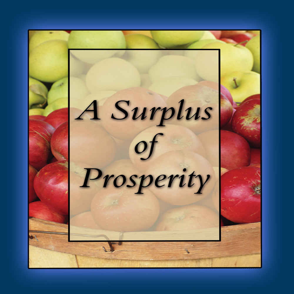 A Surplus of Prosperity Audio Series MP3 Download