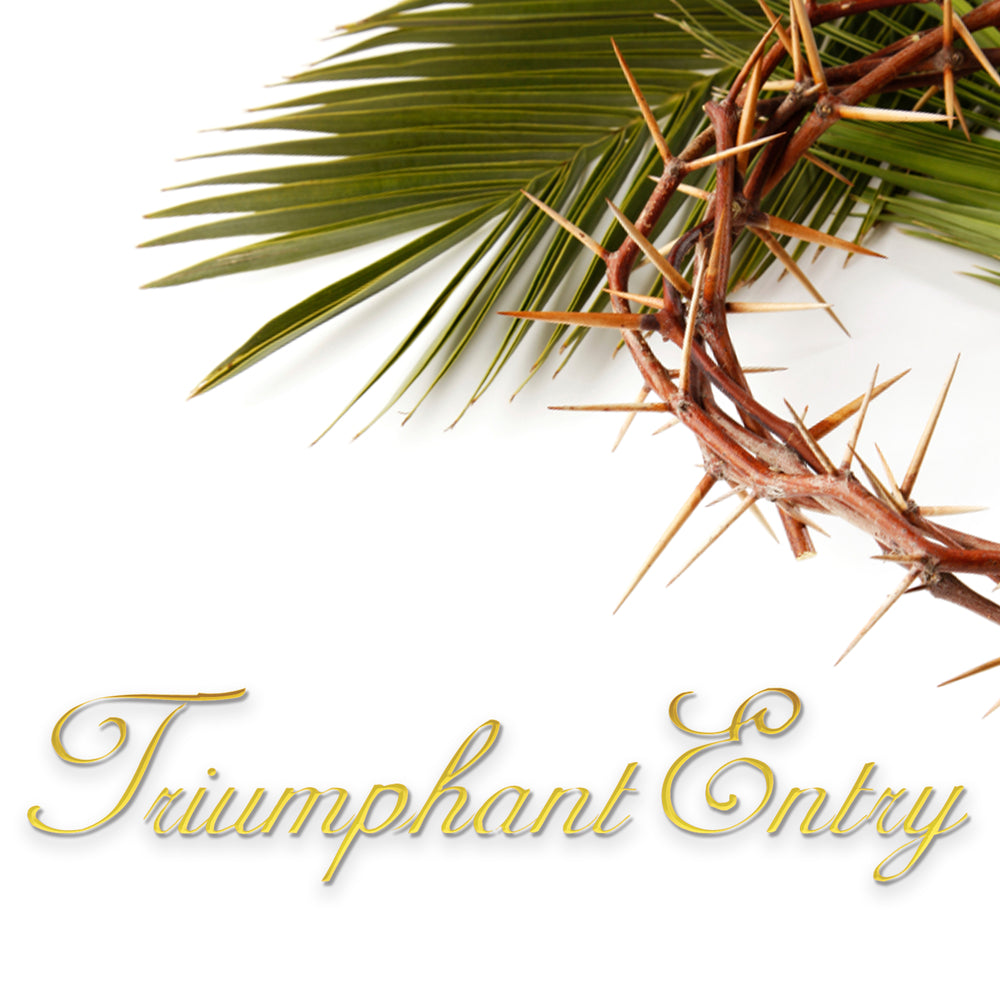 Triumphant Entry Audio Series MP3 Download