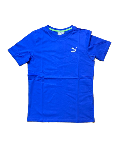 PUMA GRAPHIC TEE TFS