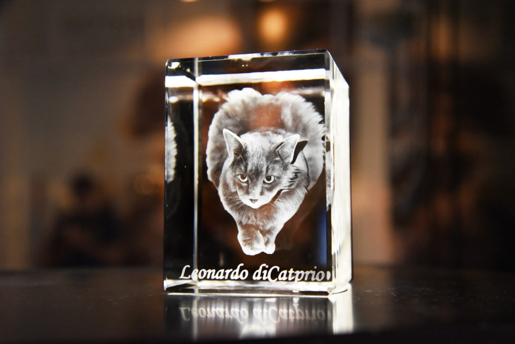 3D Crystal Portrait - Small