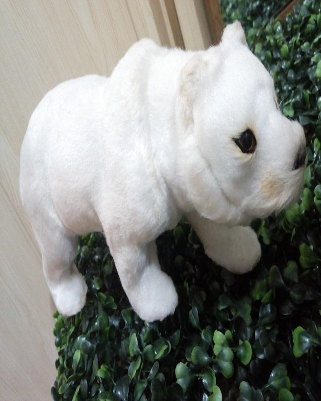 Polar Bear Showpieces - 7 Inches -White