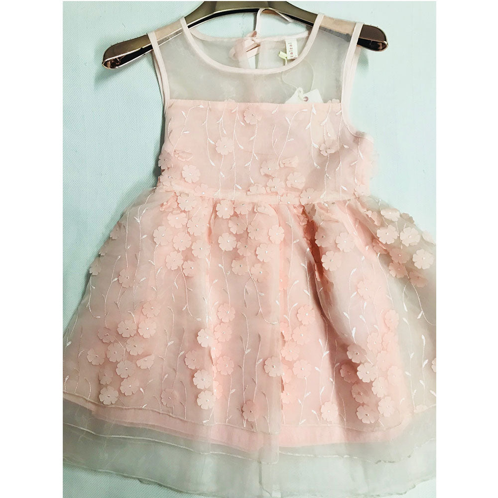 Fancy Pink Frock with Pink Flowers