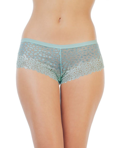 Penny Lace Embrace Mid Rise Sheer Hipster Brief