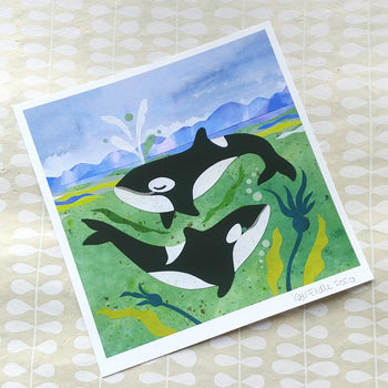 Playing Spraying Orca Print