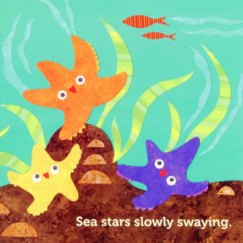 ocean board book for babies