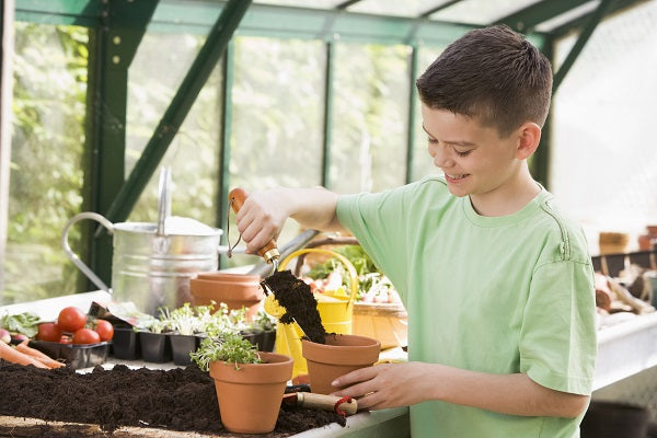 How Do Greenhouses Work For Kids