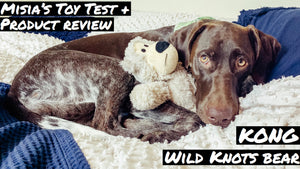 Toy Review | Kong Wild Knots Bear