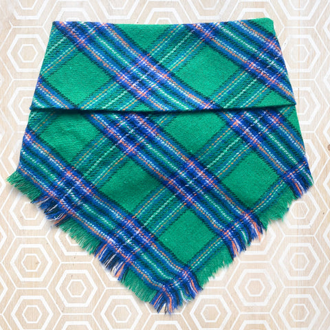"""Luck of the Irish"" Flannel Bandana"