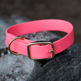 Adventure Collar - Hi Vis Pink