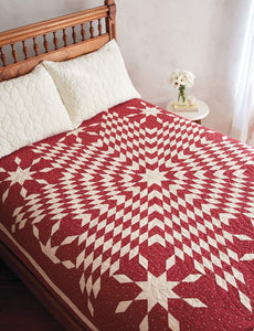 Red & White Quilts: 14 Quilts with Timeless Appeal from Today's Top Designers