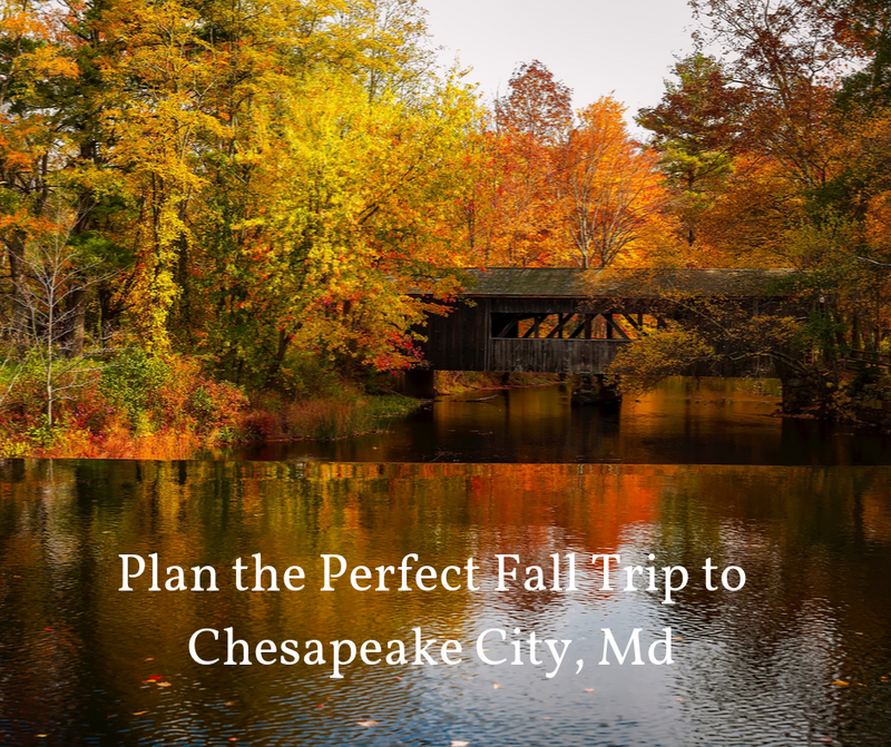 Plan the Perfect Fall Trip to Chesapeake City, Md