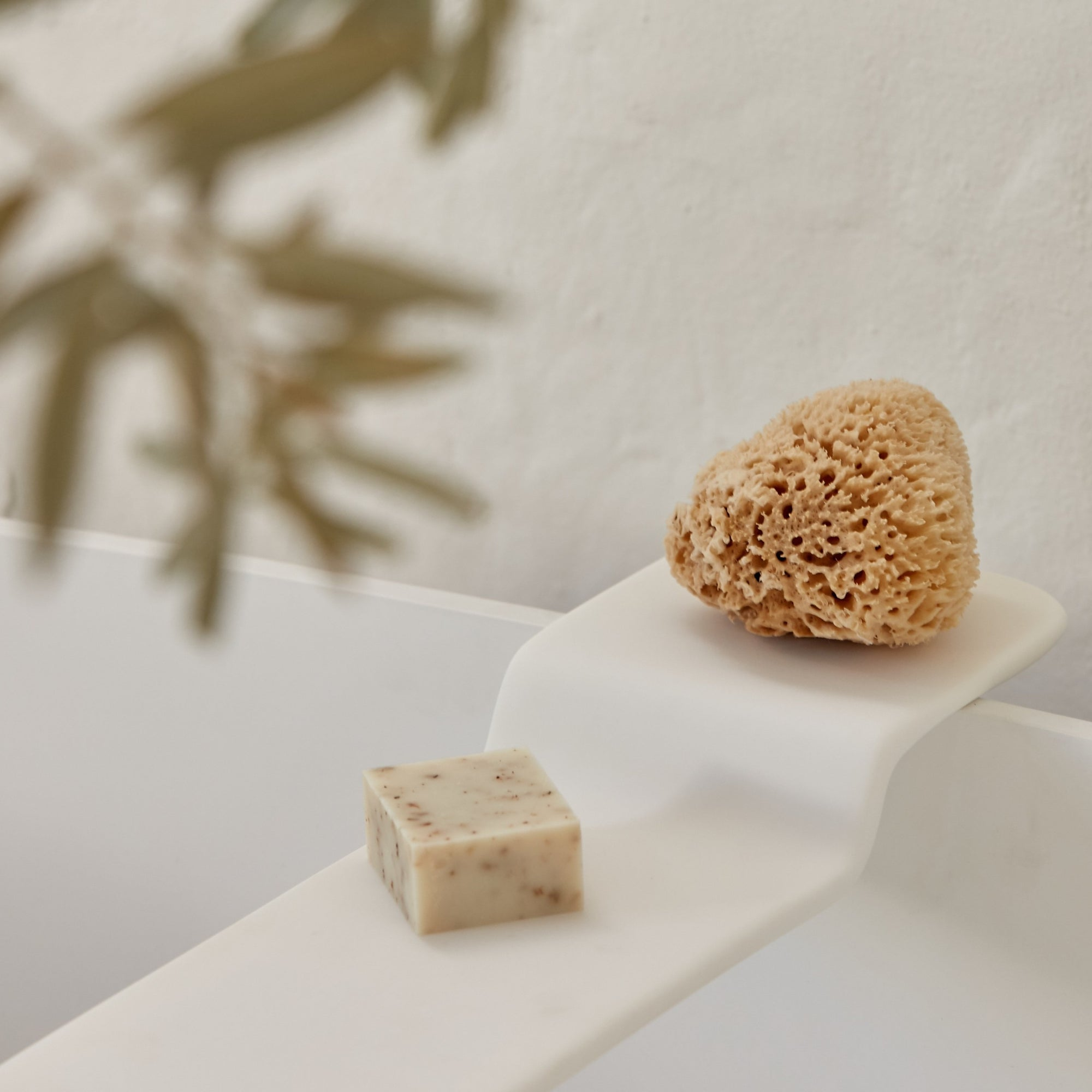 Tradition Ecological Sea Sponge