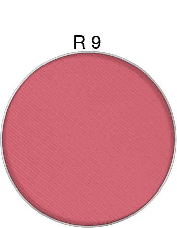 Kryolan powder blusher refill for palette and compact in R9
