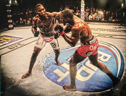 "Anthony ""Rumble"" Johnson Authentic Signed 16x20 - UFC - Top Notch Signatures LLC"