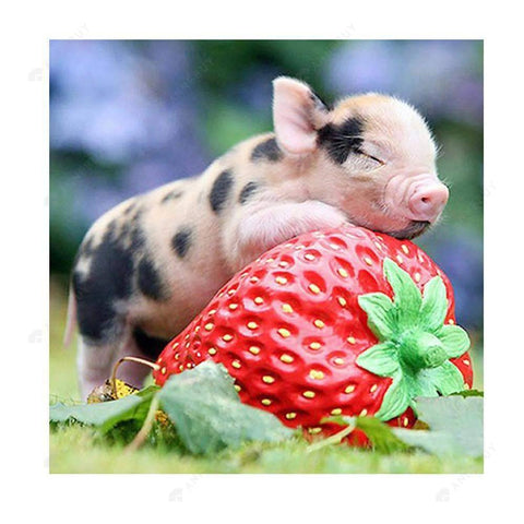 Diamond Painting-Partial Drill Baby Pig Sleep on Strawberry