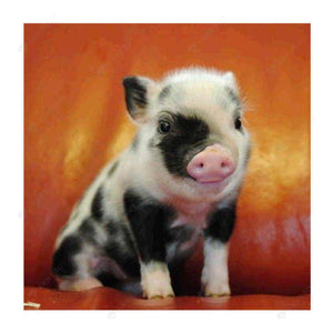 Diamond Painting-5D Full Drill Small Pig