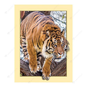 Diamond Painting-Partial Drill Tiger