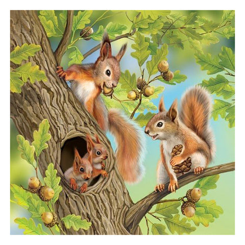 Diamond Painting-5D Full Round Drill Squirrel