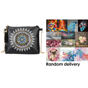 DIY Special Shaped Diamond Painting Leather Crossbody Bag Chain Makeup Bags + Randomly DP in the Picture