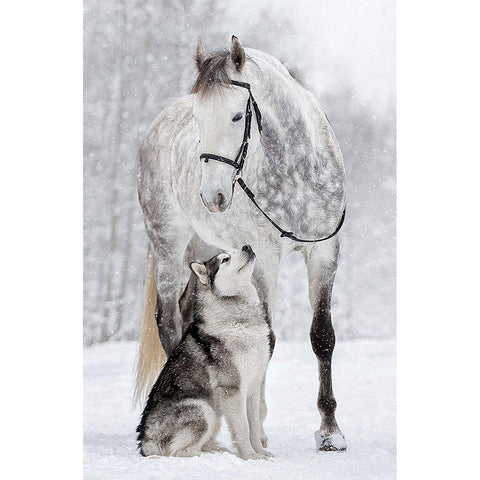 Diamond Painting-5D Full Round Drill Horse and Wolf