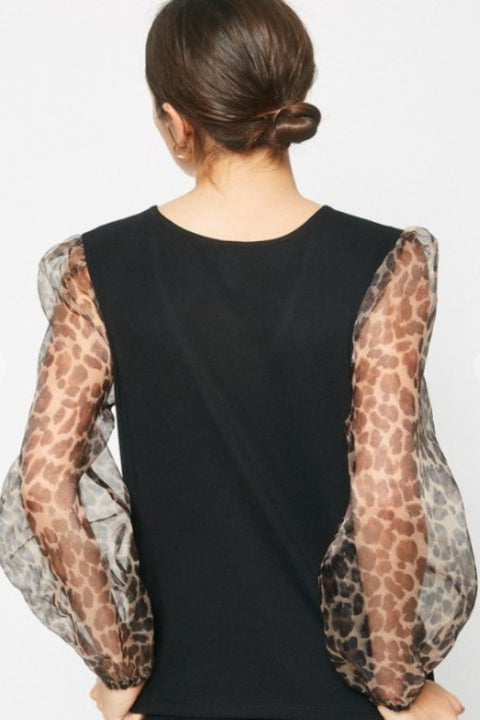 LOLO Sheer Leopard Sleeve Top
