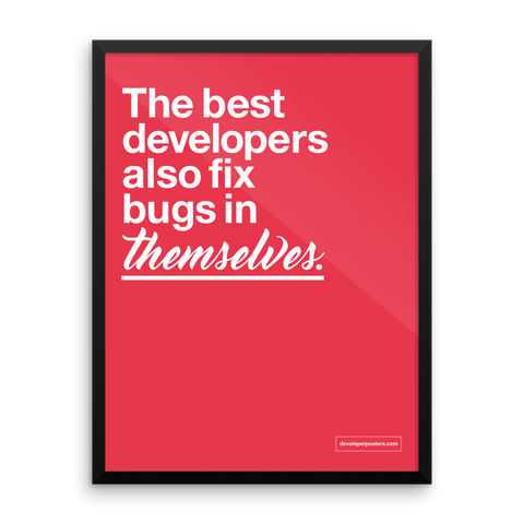 The Best Developers Also Fix Bugs In Themselves – Framed