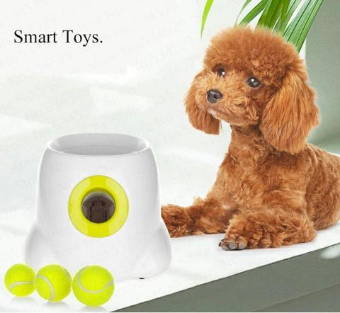 Pet Ball Throw Device - LM Collection